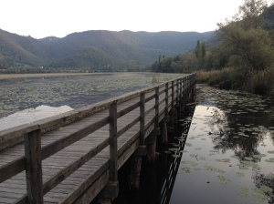 scenic boardwalk on the lake's west side
