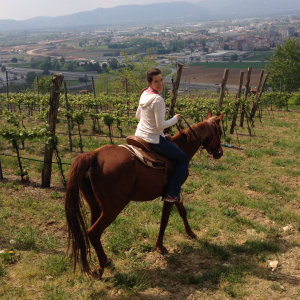 Nothing but the vineyards and the scenic Veneto plain below on this amazing horseback riding adventure!