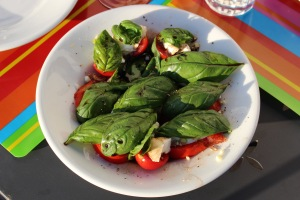 the freshest caprese salad possible - everything sourced the same day